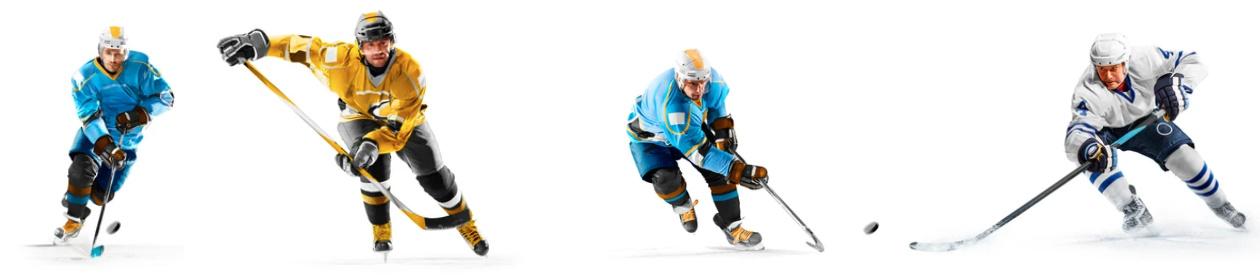 sędzia hokeja